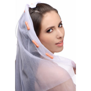 Bachelorette Party Penis Bridal Veil