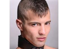 Straight Up Padded Locking Posture Collar
