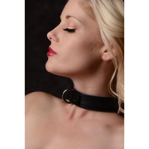 Strict Leather Luxury Locking Collar