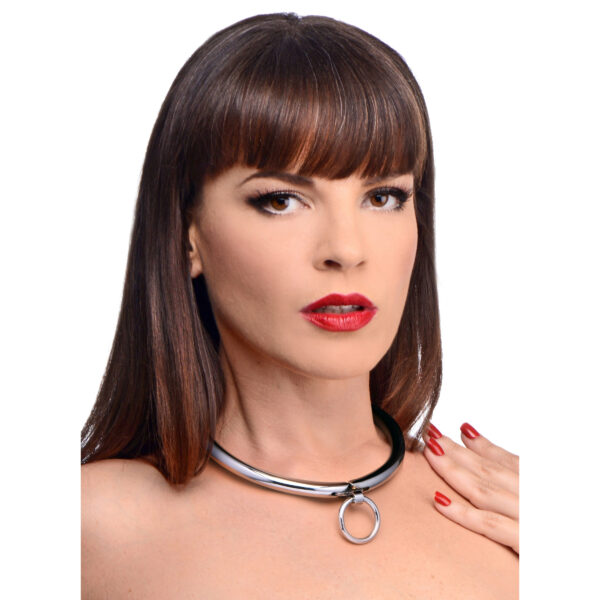 Stainless Steel Combination Lock Slave Collar